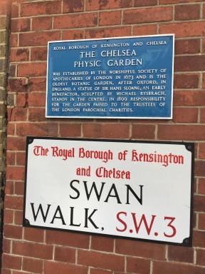 Swan Walk